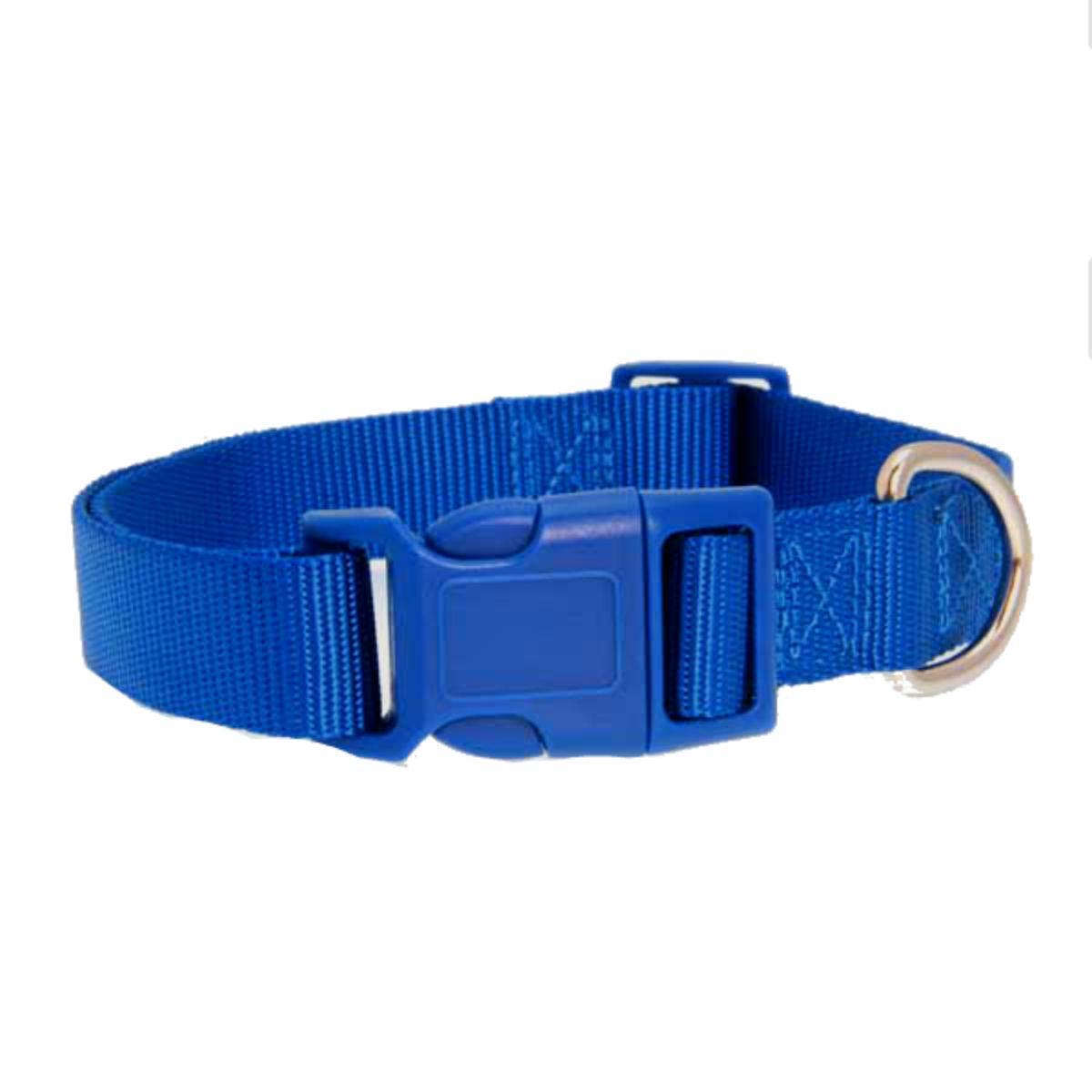 Casual Canine Nylon Dog Collar - Nautical Blue