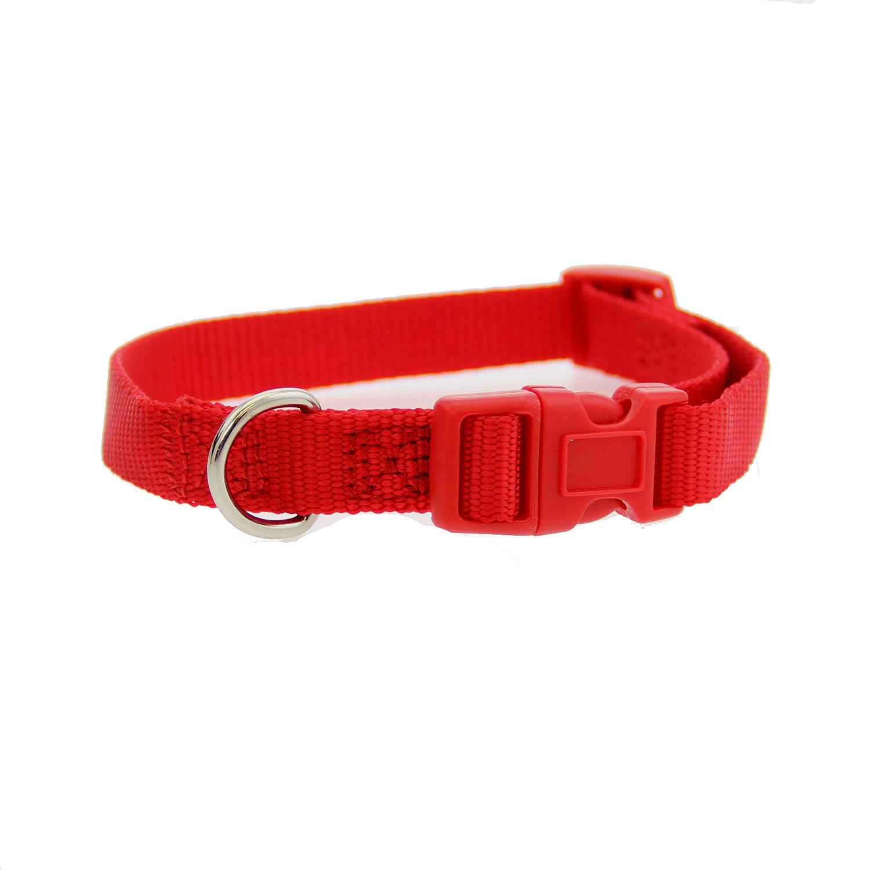 Casual Canine Nylon Dog Collar - Tomato Red