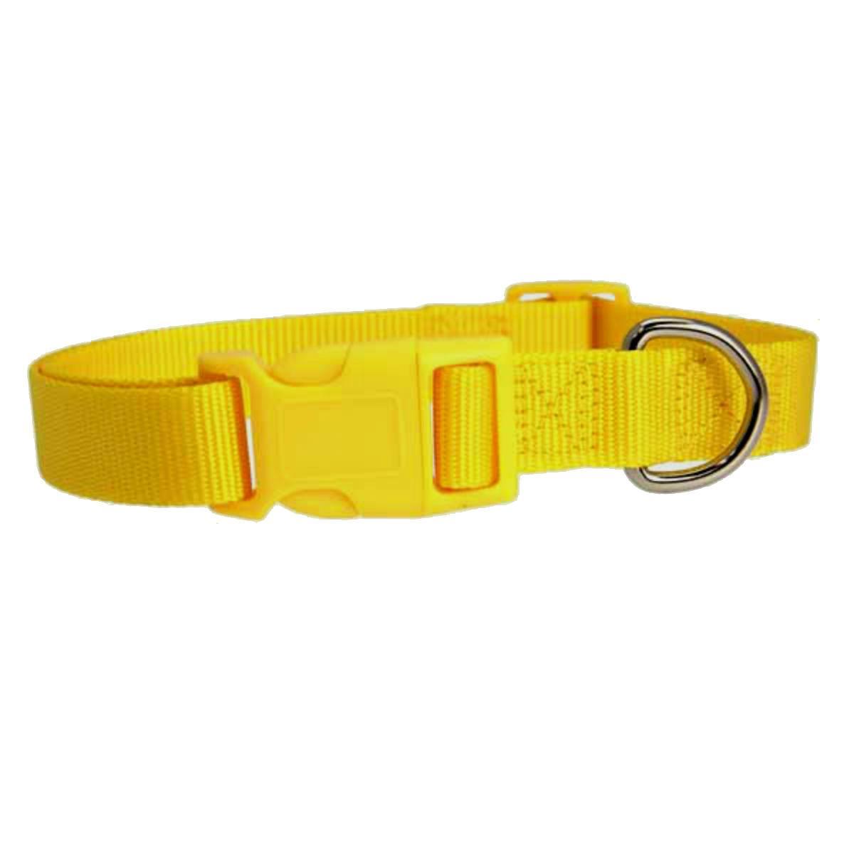 Casual Canine Nylon Dog Collar - Yellow