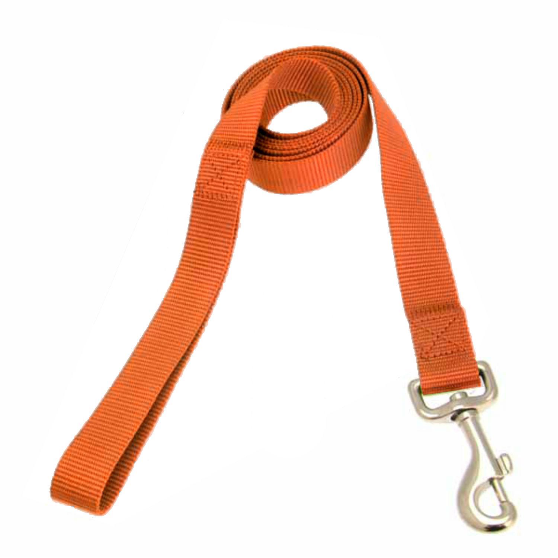 Casual Canine Nylon Dog Leash - Orange