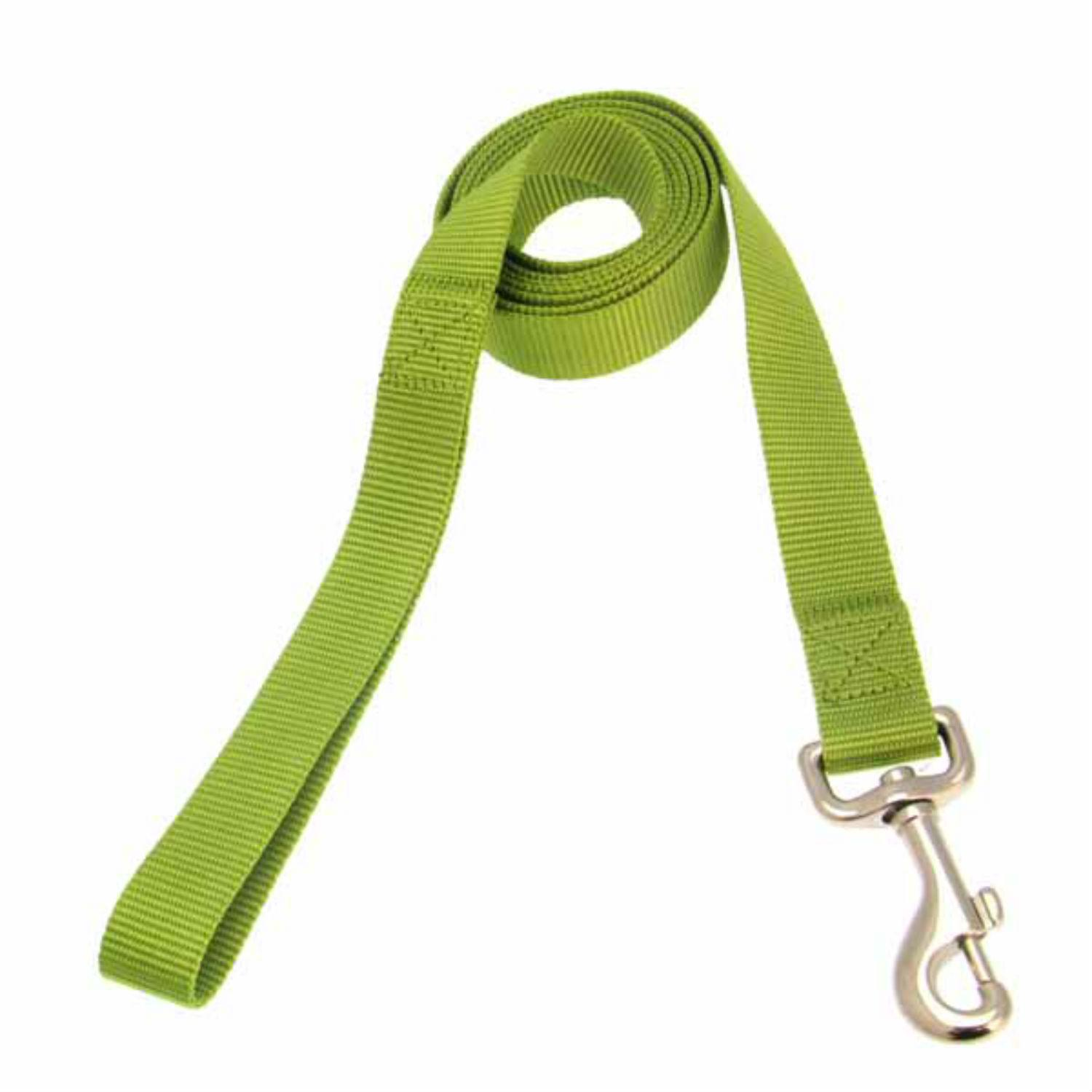 Casual Canine Nylon Dog Leash - Parrot Green