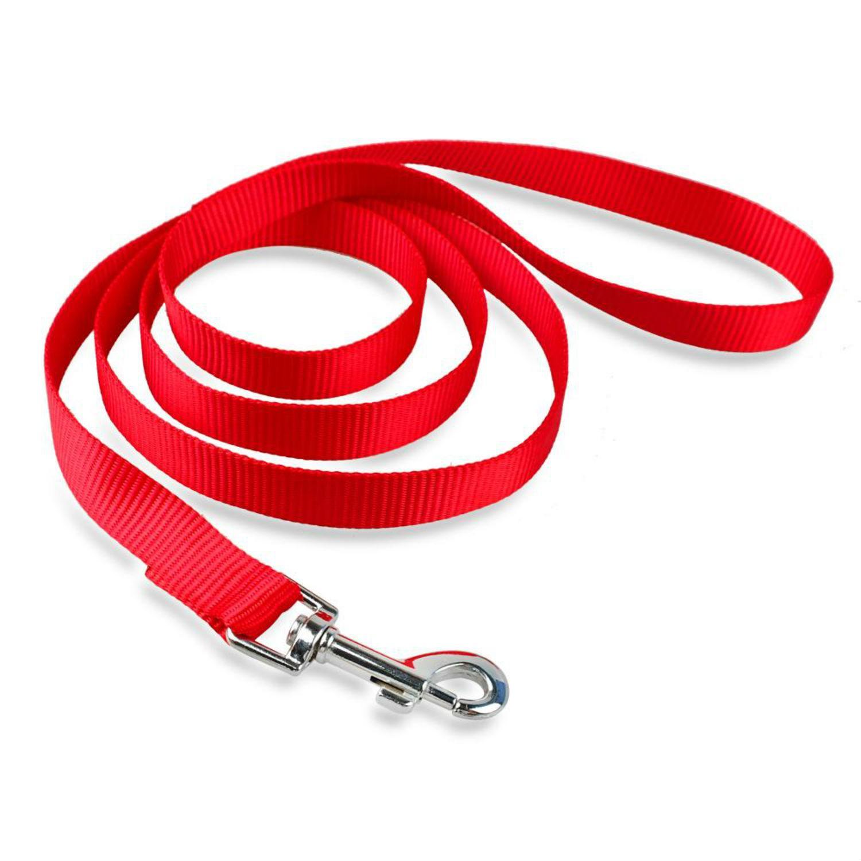 Casual Canine Nylon Dog Leash - Tomato Red