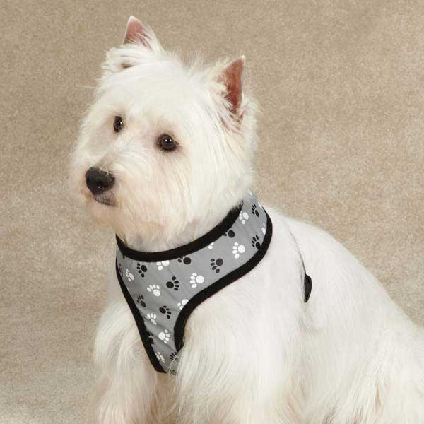 Casual Canine Reflective Pawprint Dog Harness - Gray