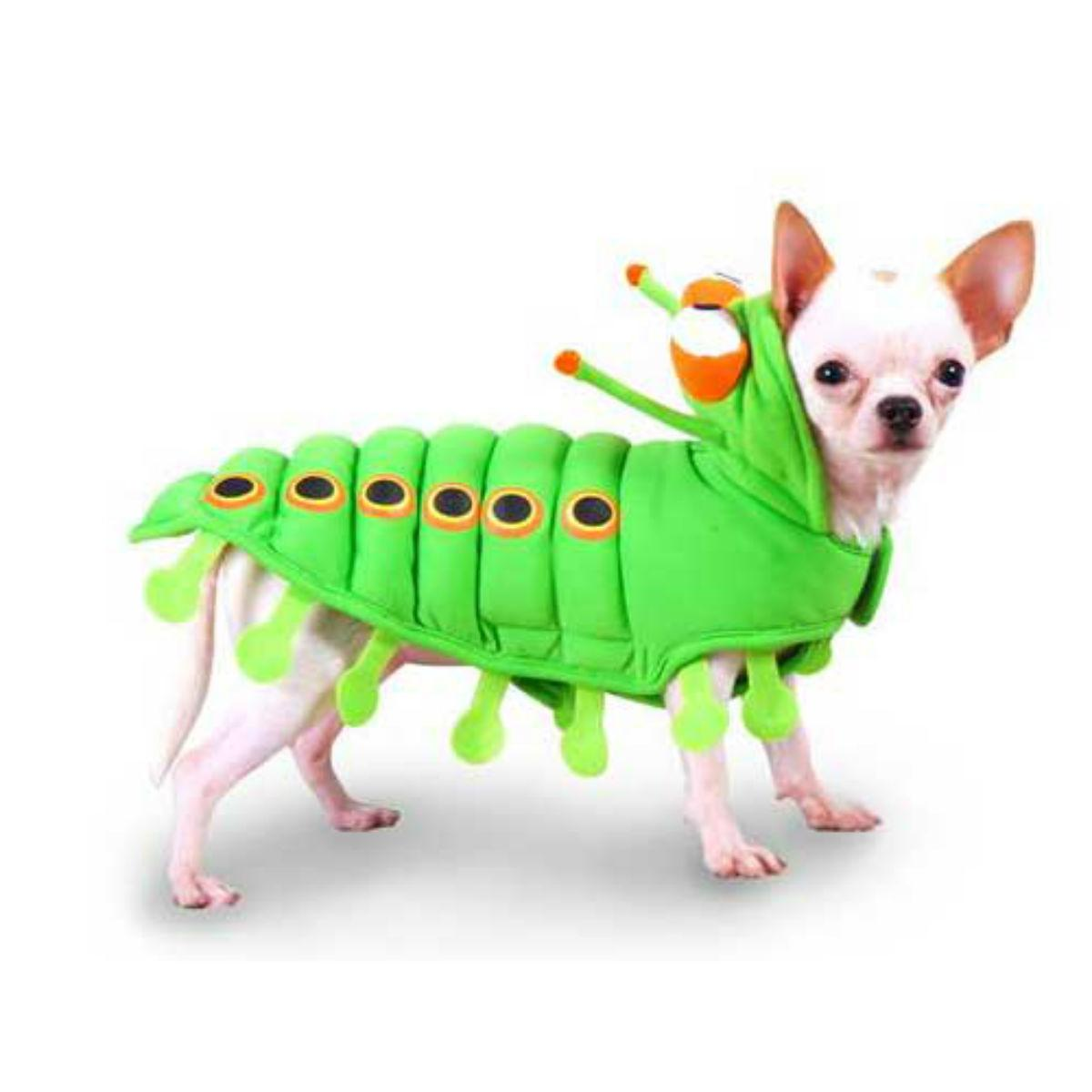 Caterpillar Halloween Dog Costume - Green