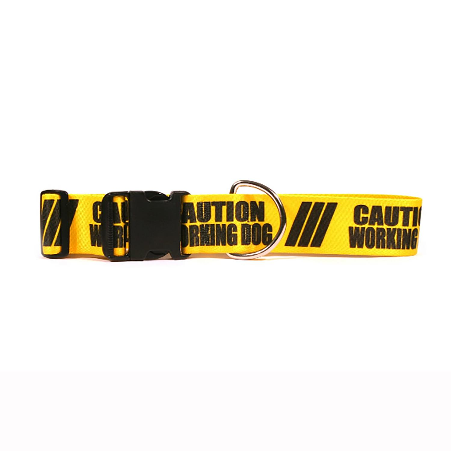 Caution Dog Collar by Yellow Dog - Working Dog