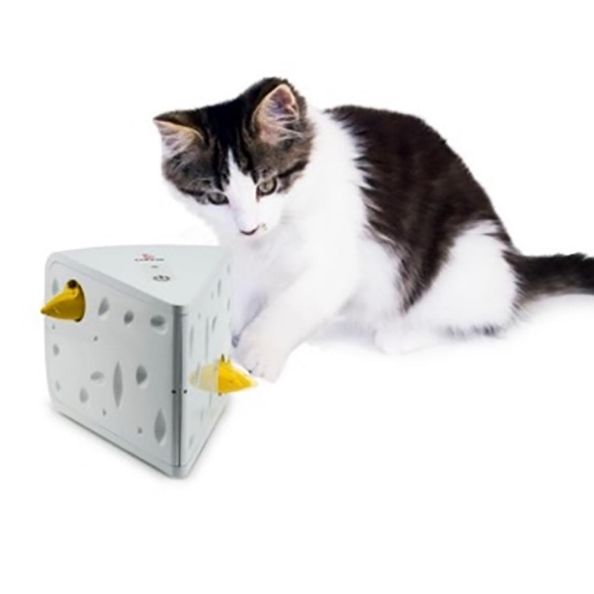 Cheese Cat Toy