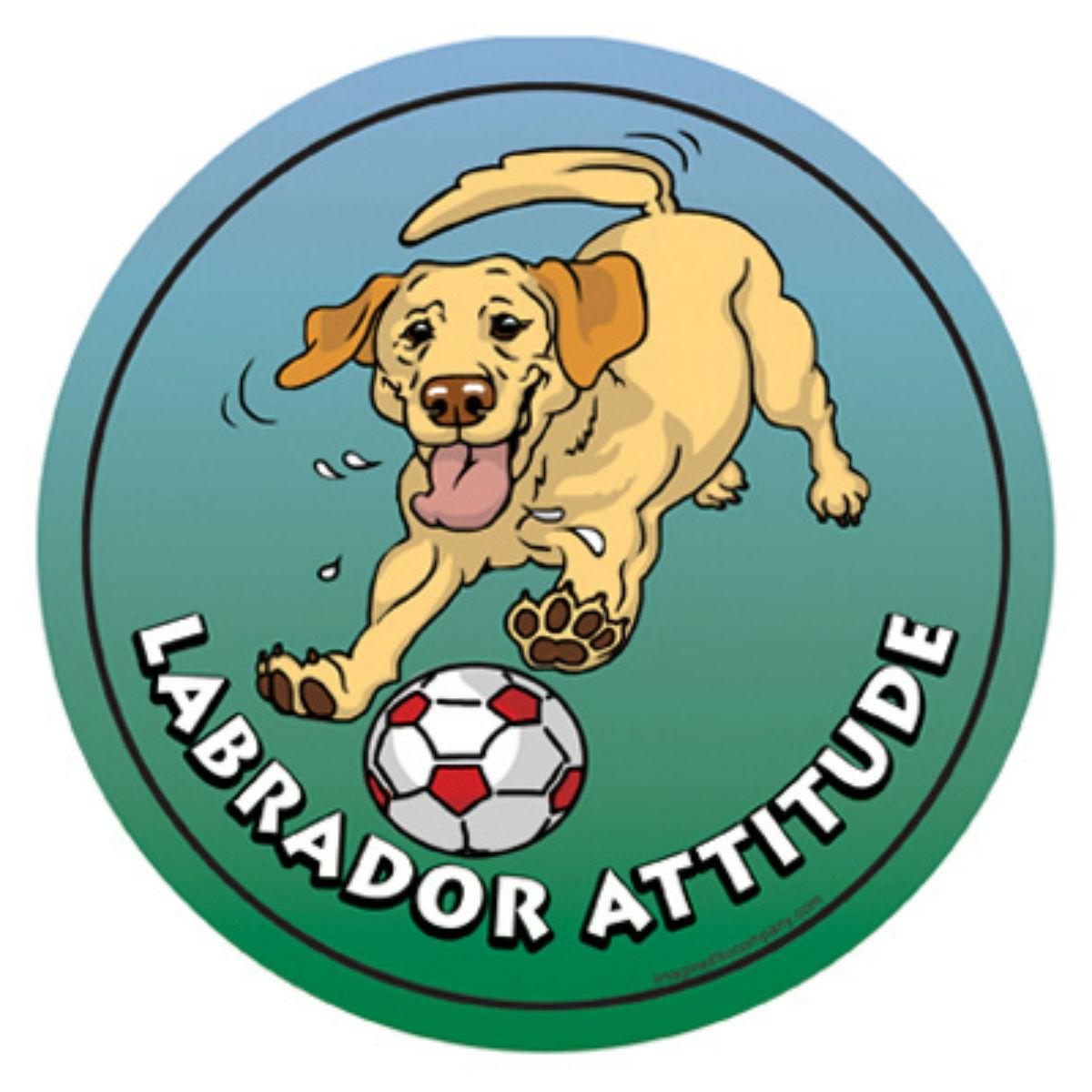 Circle Attitude Magnet Collection - Labrador