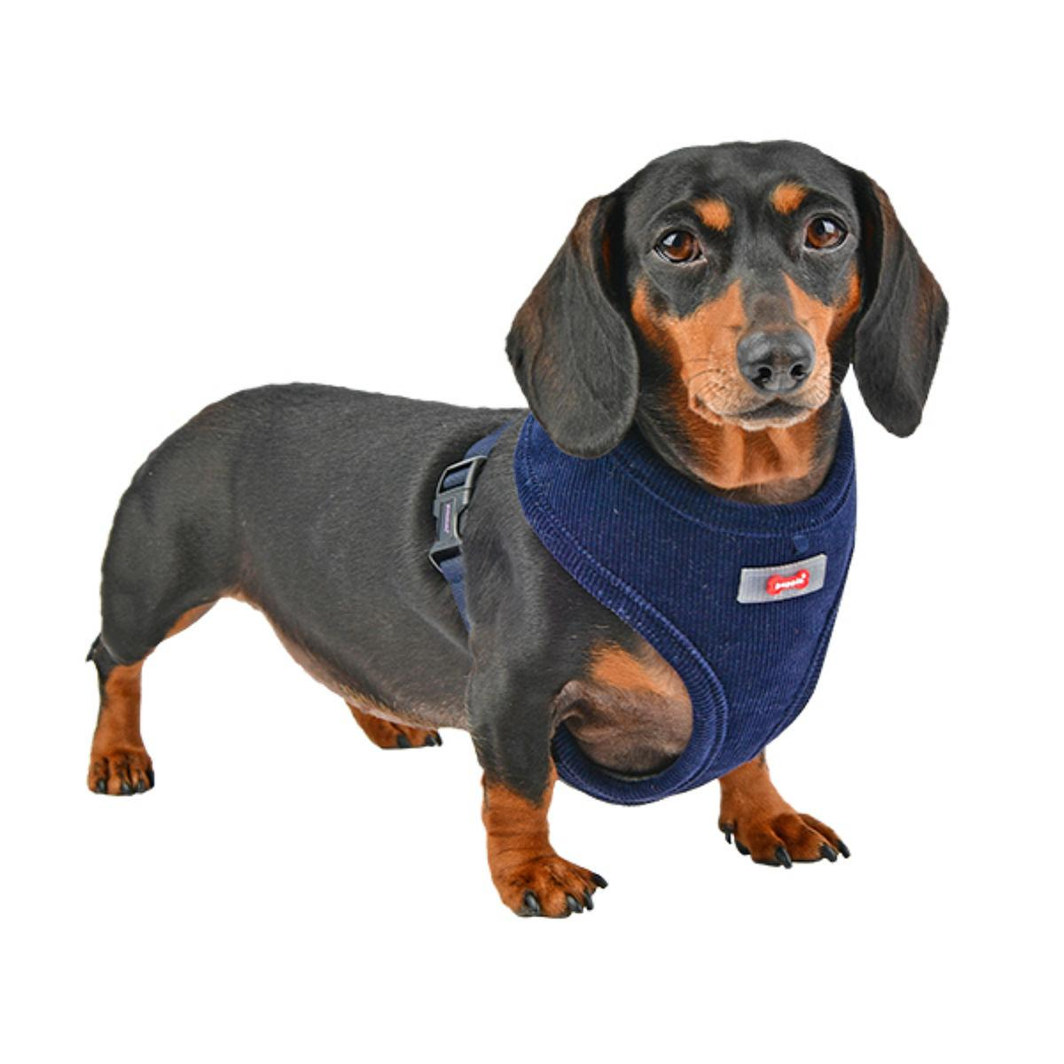 Classy Basic Style Dog Harness By Puppia - Navy