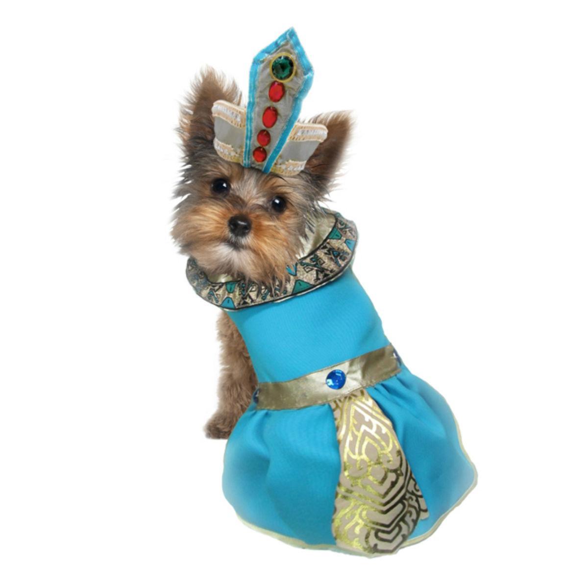 Cleopatra Dog Costume - Blue
