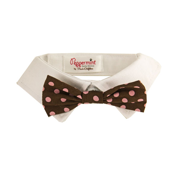 Colin Polka Dot Dog Shirt Collar & Bow Tie