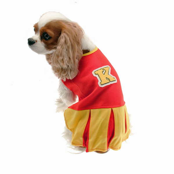 Collegiate Cheerleader Dog Costume