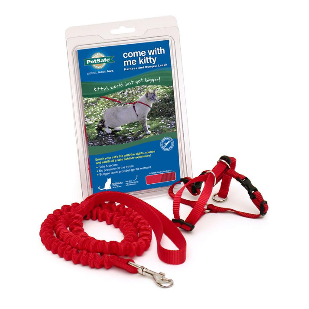 Come with Me Kitty Harness & Bungee Leash - Red