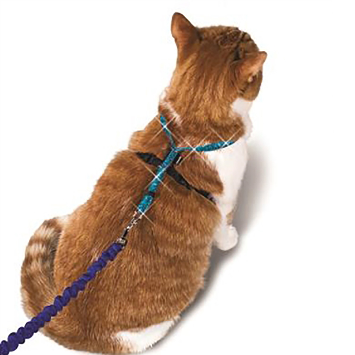 Come With Me Kitty Leash/Harness - Sparkle Blue