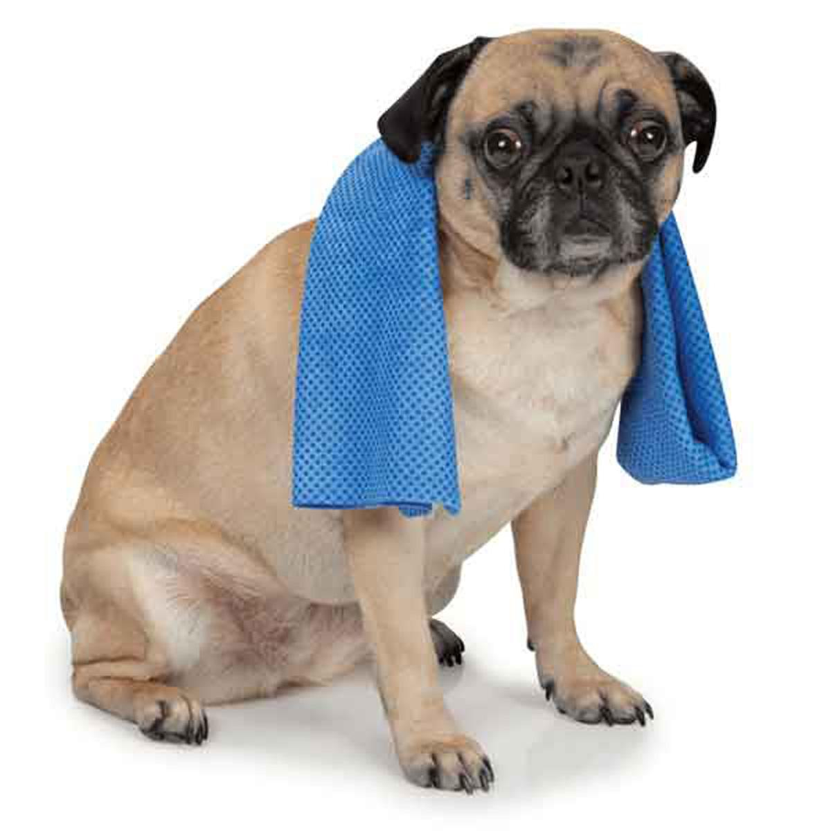 Cool Pup Cooling Dog Towel
