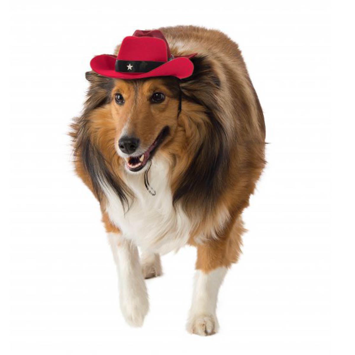 Cowboy Hat Pet Costume - Red