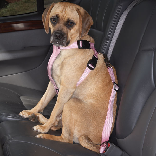 cruising companion car harness light pink 1 cruising companion car harness light pink with same day shipping car harness at nearapp.co