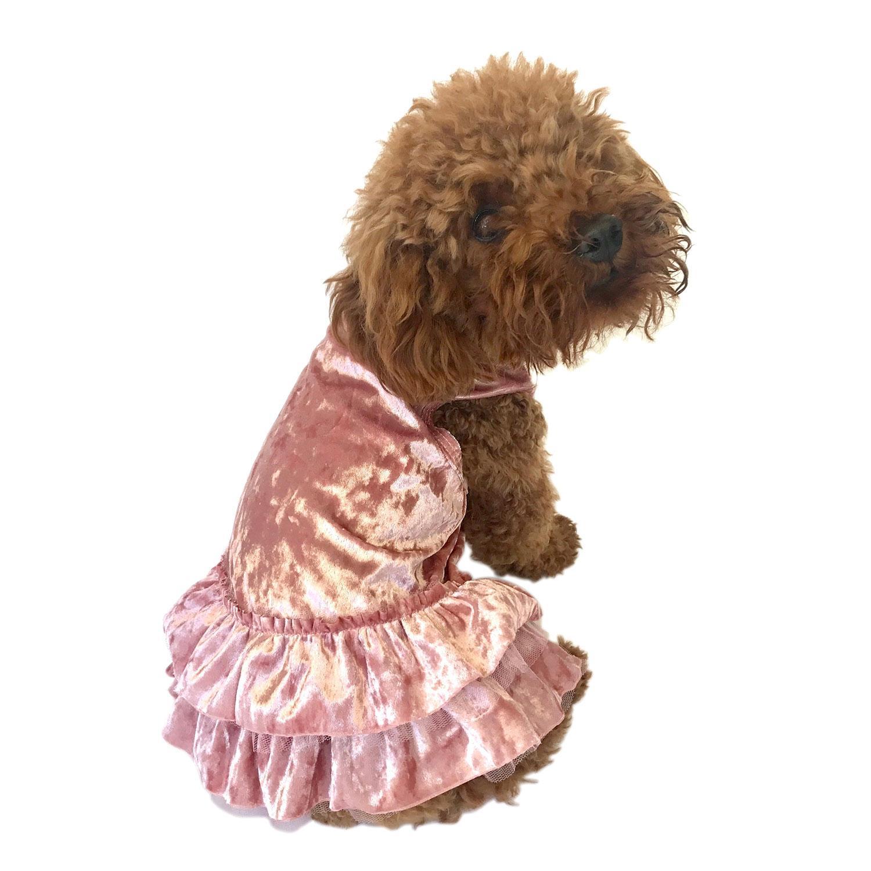 Crushin' on YOU Metallic Velvet Dog Dress - Rose