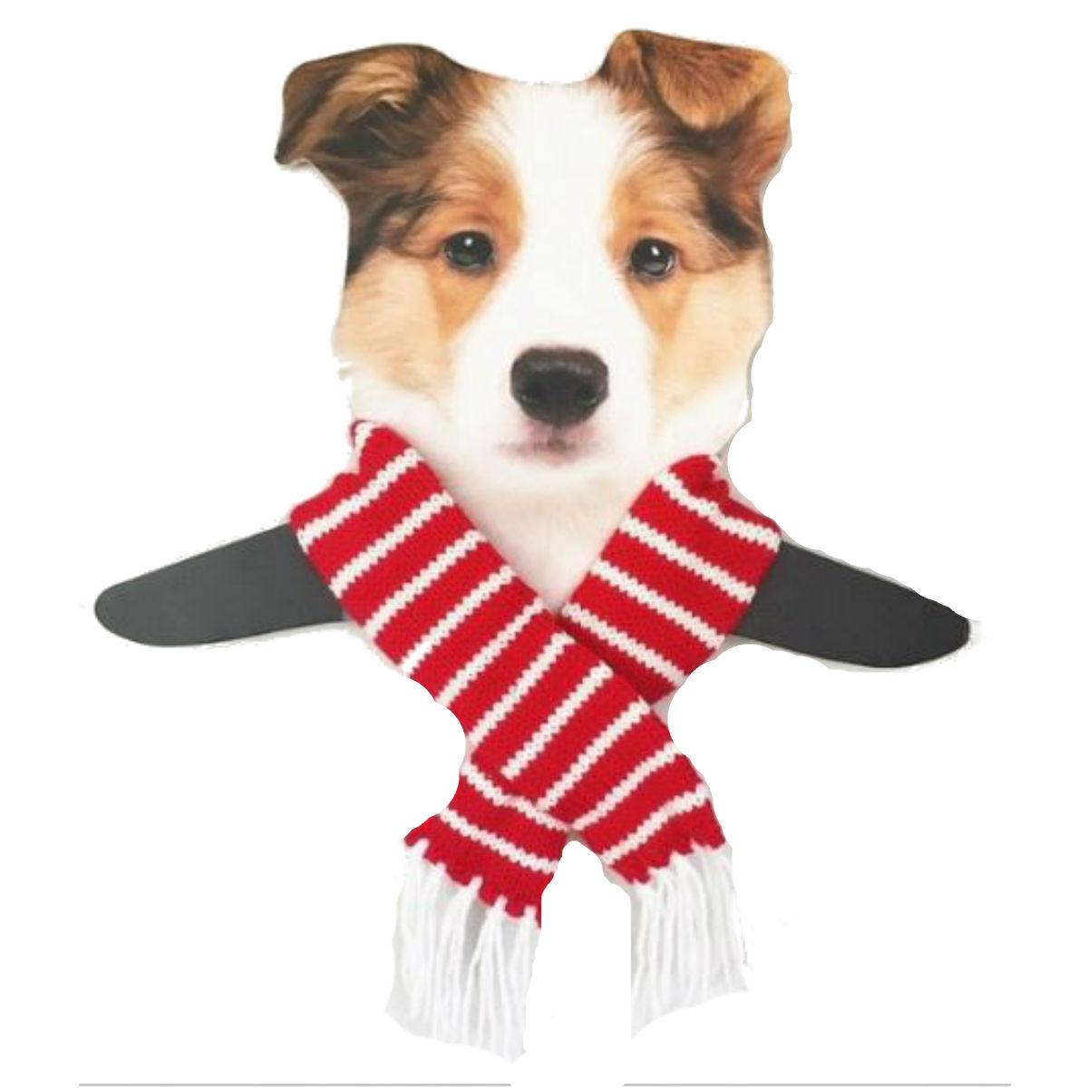 Dallas Dogs Sassy Striped Dog Scarf - Red and White