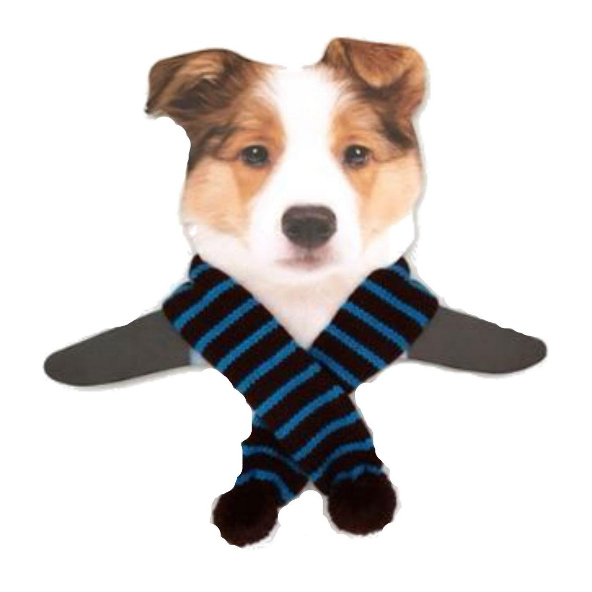 Dallas Dogs Sassy Striped Dog Scarf - Turquoise and Brown