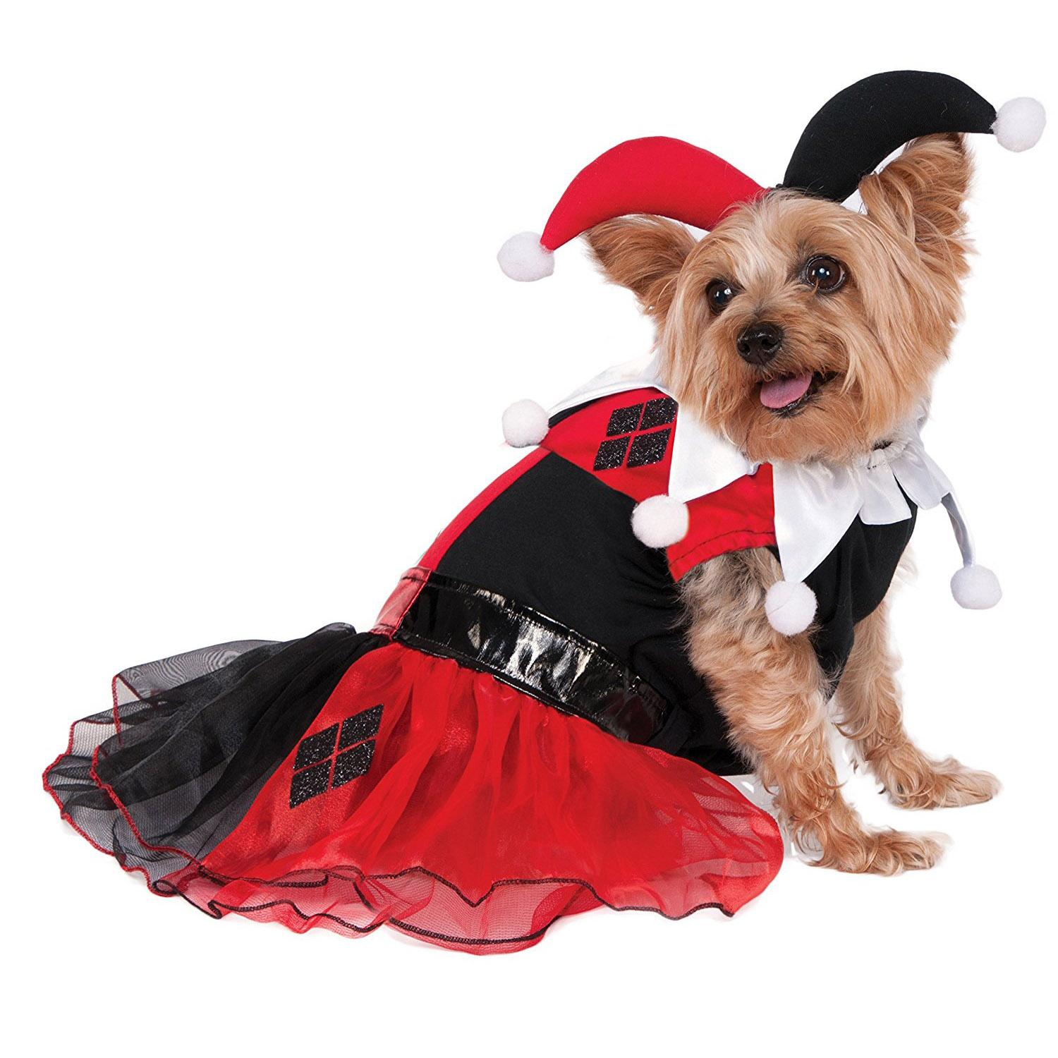 DC Comics Harley Quinn Dog Costume