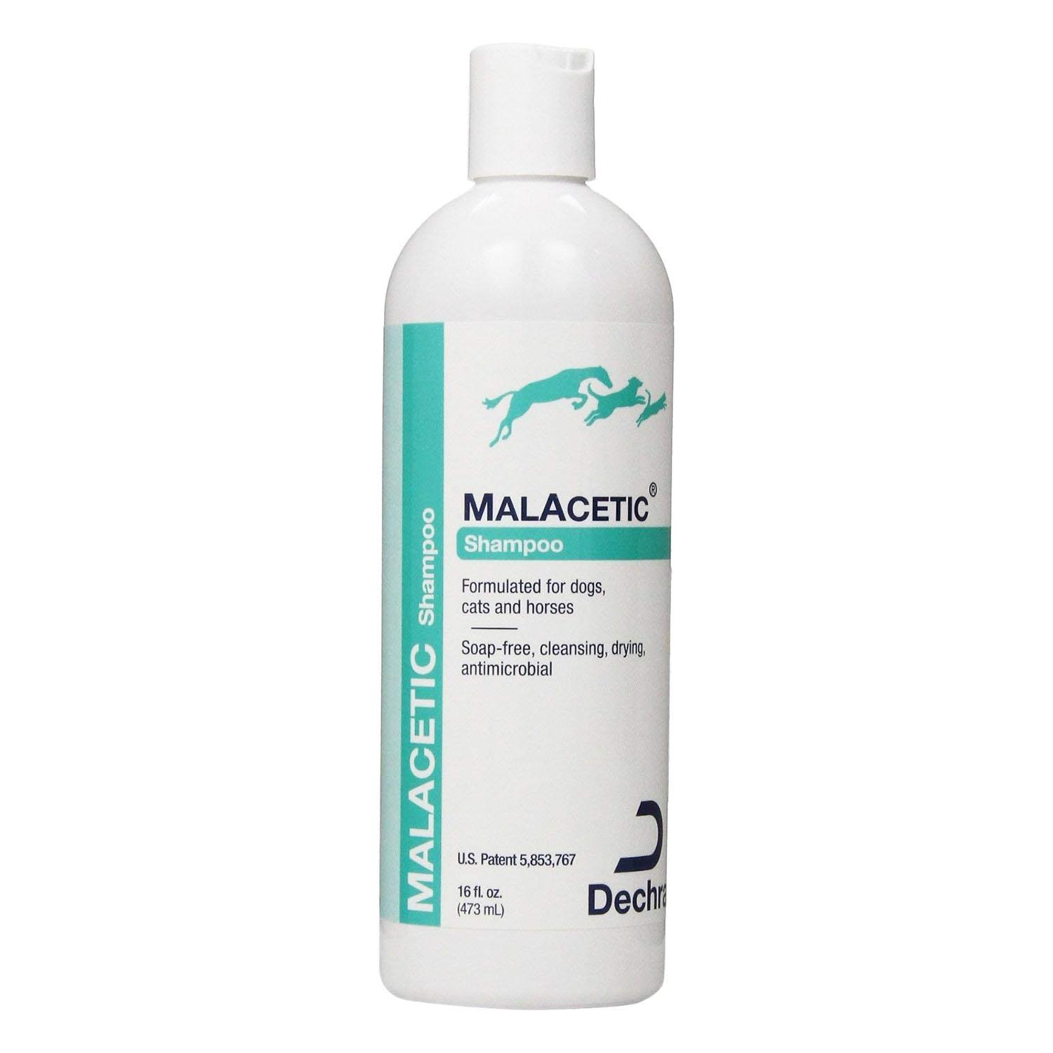 Dechra MalAcetic Shampoo for Dogs and Cats