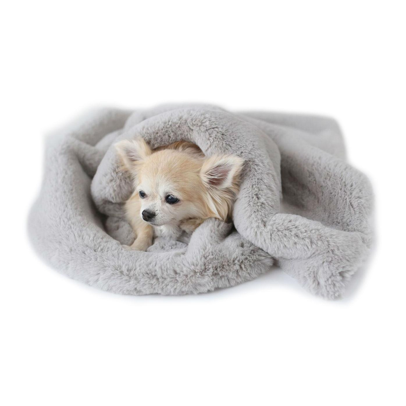 Divine Dog Blanket by Hello Doggie - Dove Gray