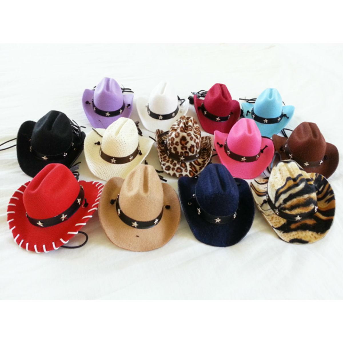 Dog Cowboy Hat - Purple Straw