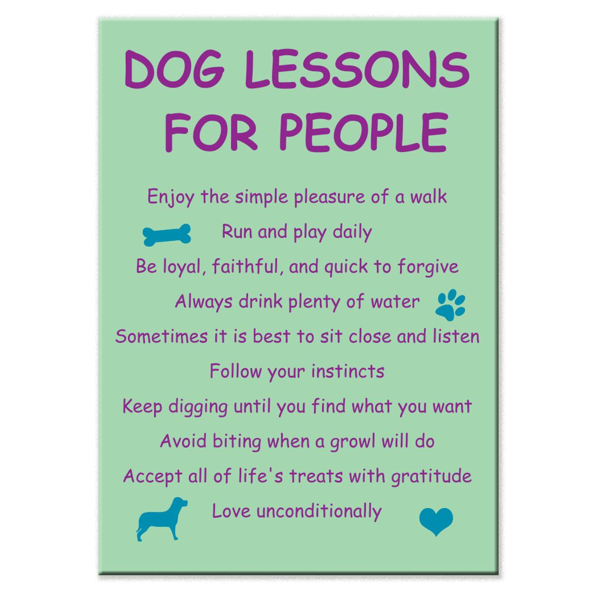 Dog Lessons For People Magnet by Dog Speak
