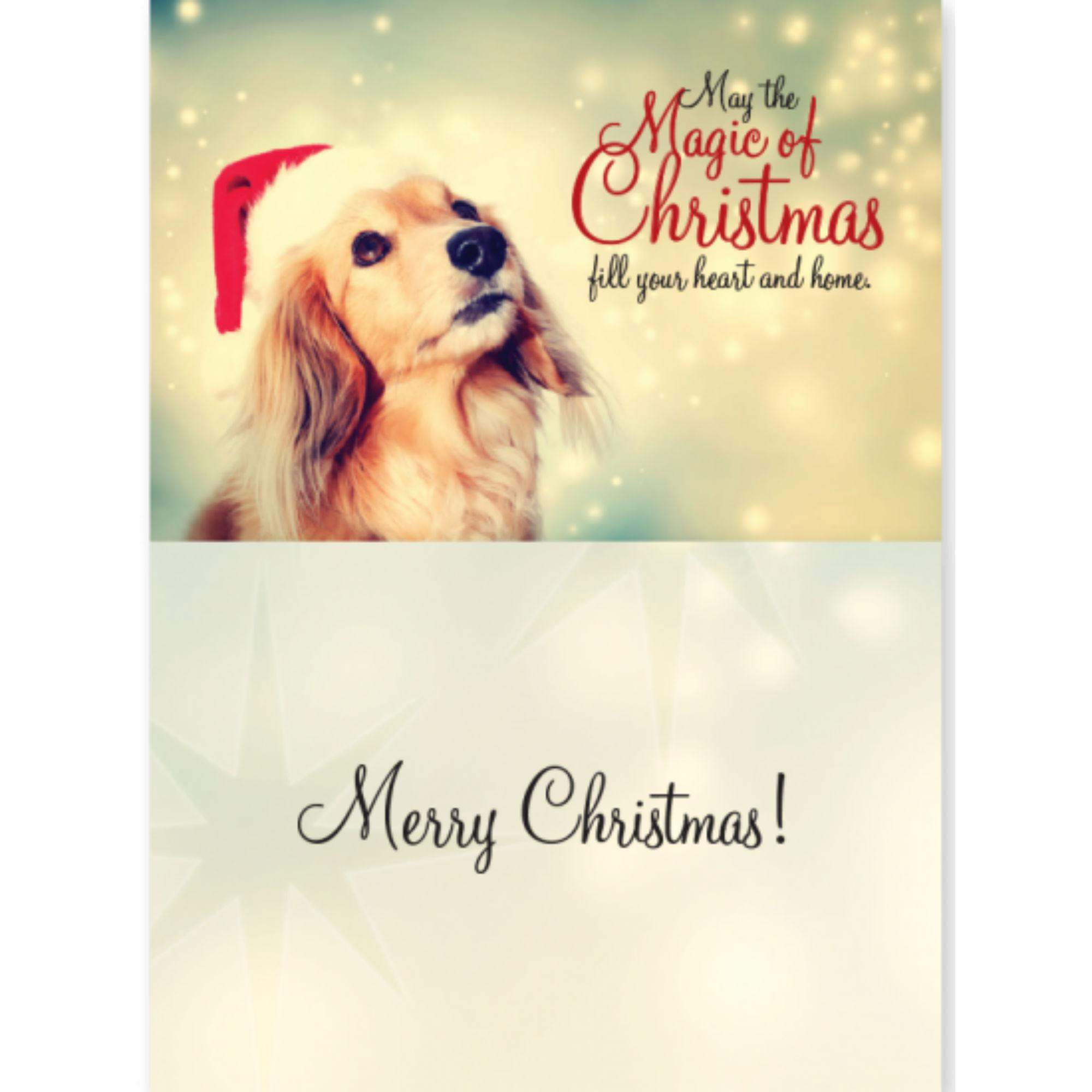Dog Speak Dog Christmas Card - Magic Of Christmas