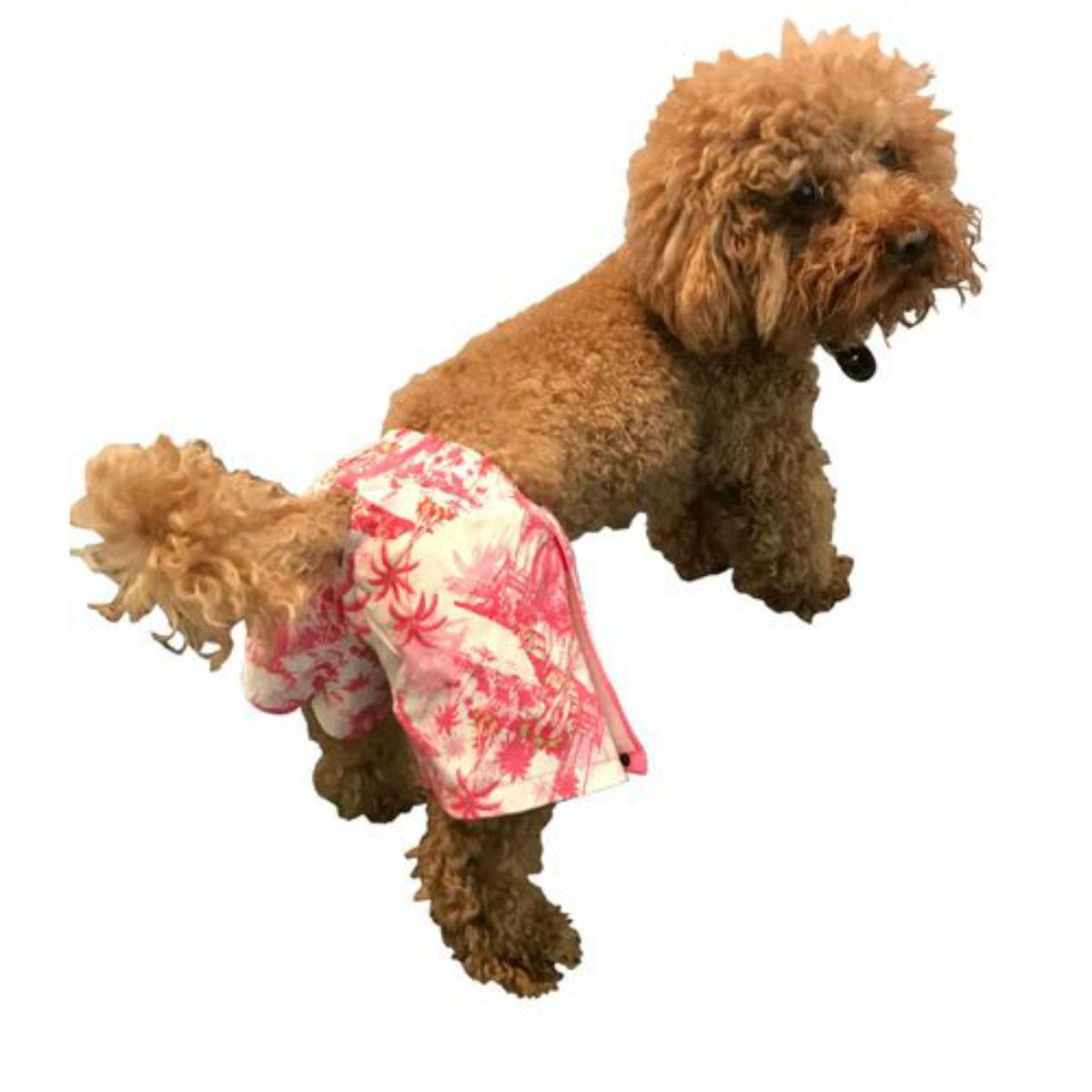 The Dog Squad Reversible Board Dog Shorts - Pink Black Dot/ Pink Retro Scenic