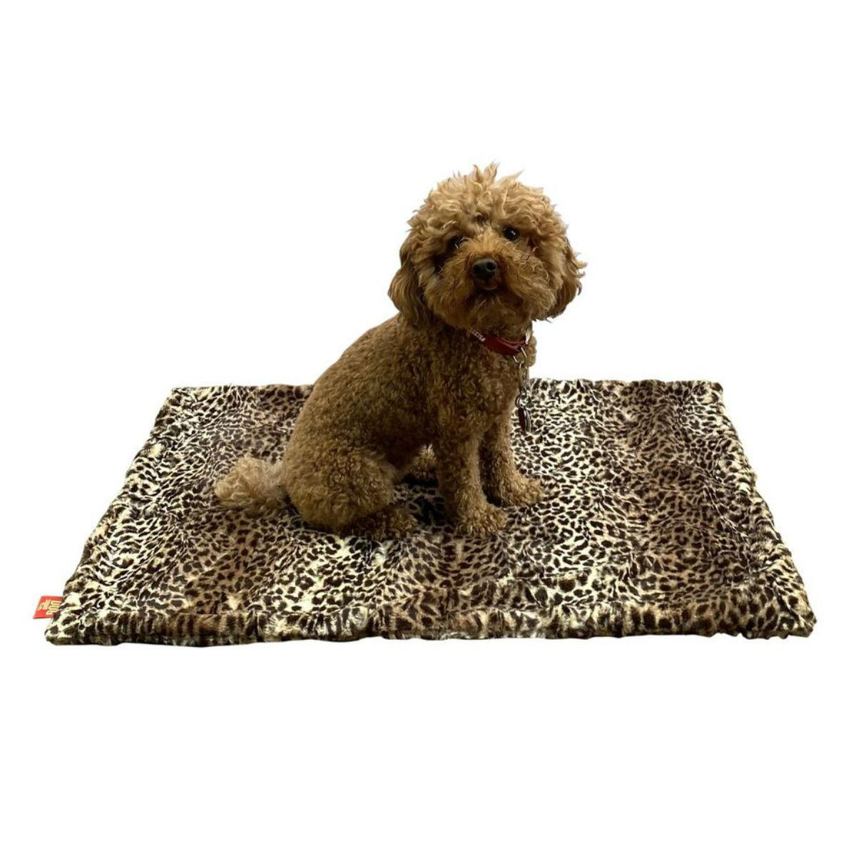 The Dog Squad's Minkie Dog Blanket - Cheetah Ombre