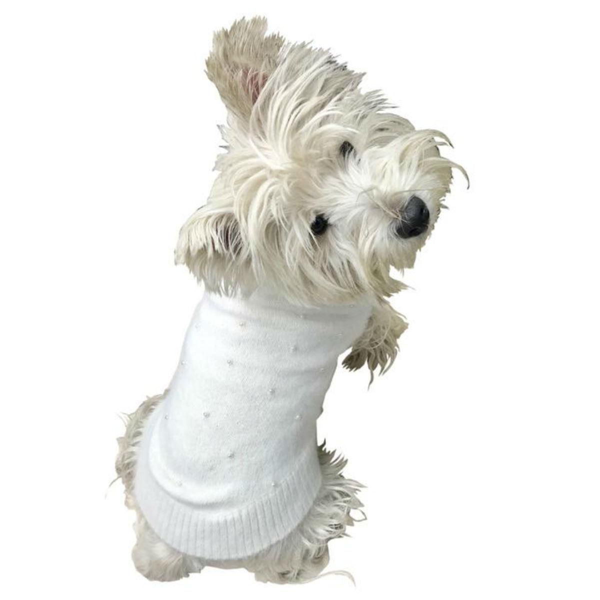 The Dog Squad's Pearly Girl Dog Sweater - Ivory