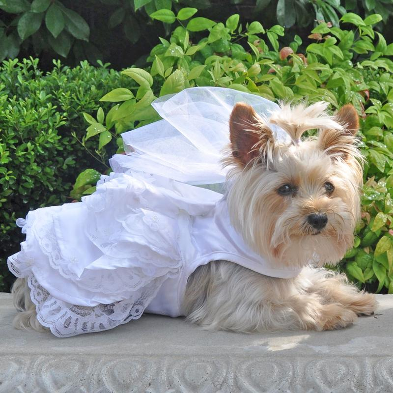 Dog Wedding Harness Dress Set By Doggie Design With Same