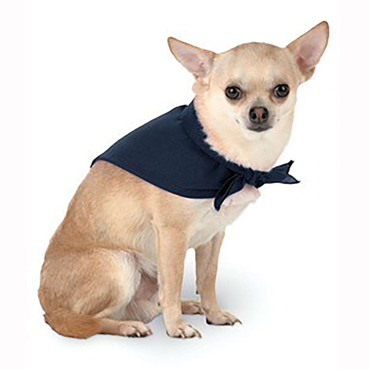 Blank Dog Bandana - Navy