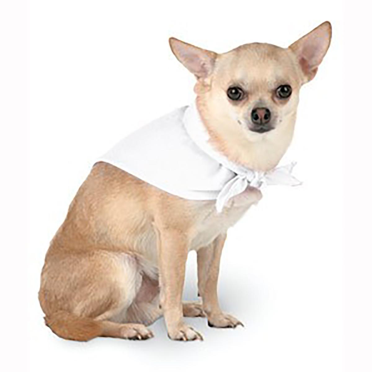 Blank Dog Bandana - White