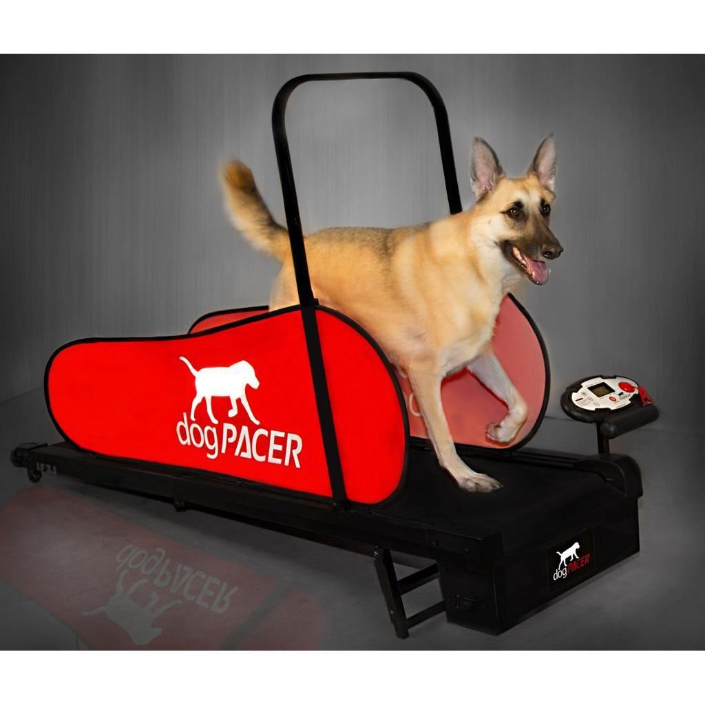 DogPacer Dog Treadmill - LF3.1 - Includes Shi...