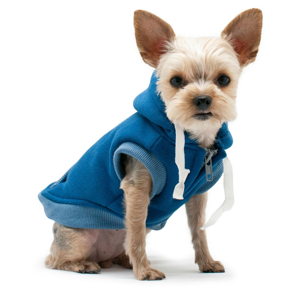Drawstring Dog Hoodie by Dogo - Blue