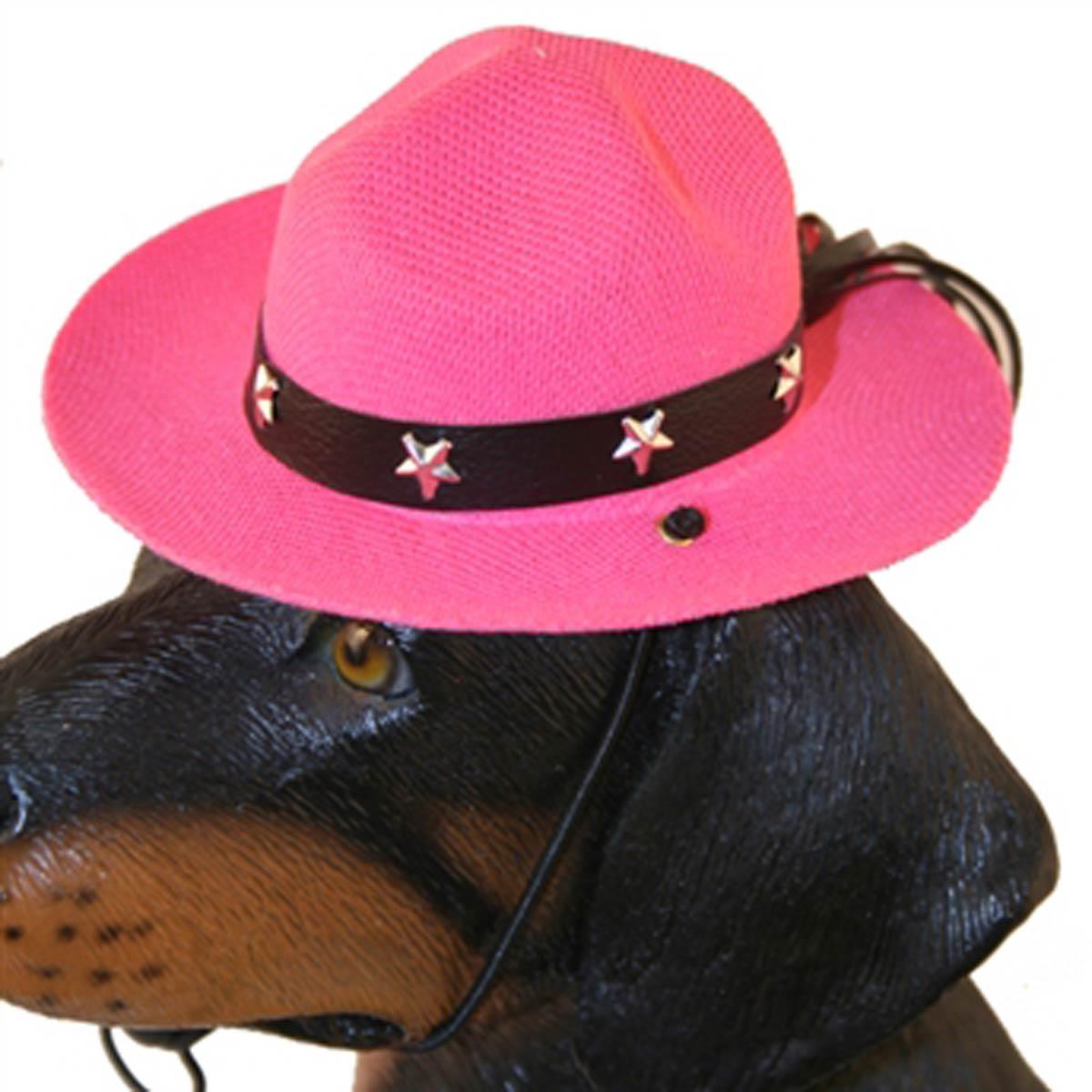 Drill Sergeant Dog Hat - Pink