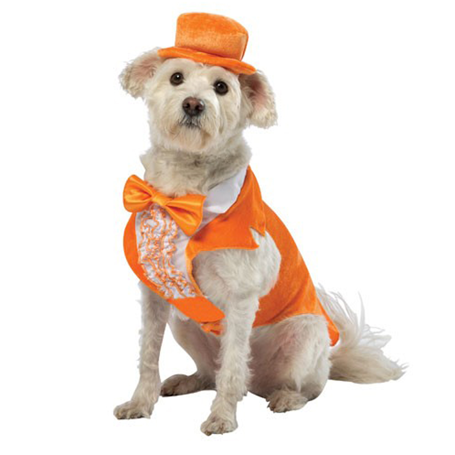 Dumb and Dumber Lloyd Tux Dog Costume - Orange with Same Day ...