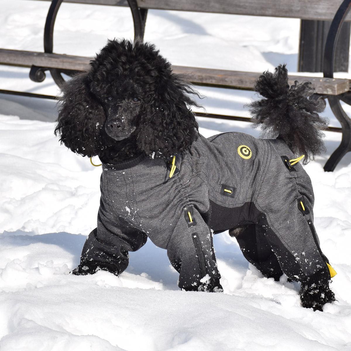 Zippy Dynamics Cozy Full-Body Dog Suit