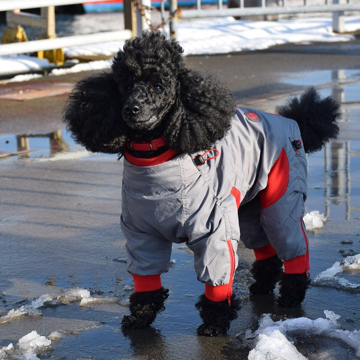 Zippy Dynamics Zippy Full-Body Dog Suit