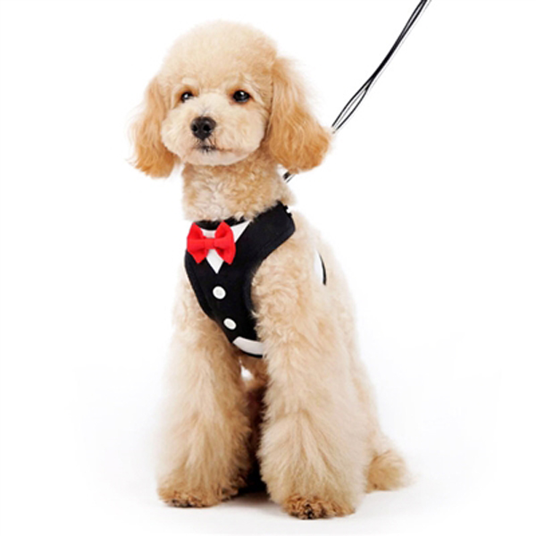 EasyGo Bowtie Dog Harness by Dogo -  Black