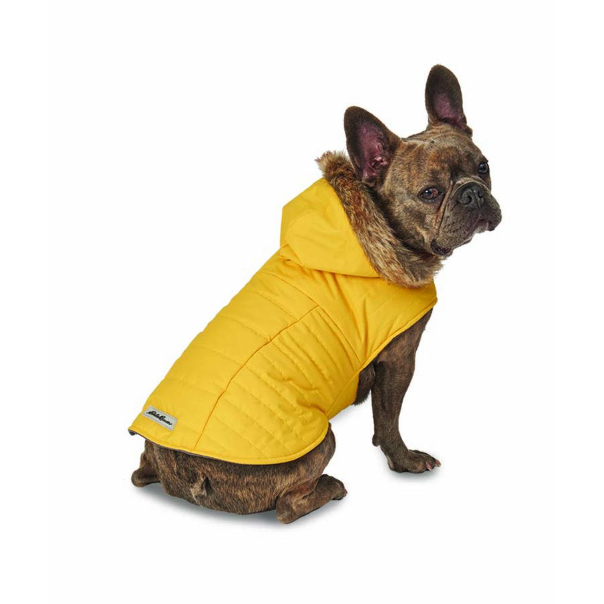 Eddie Bauer Chinook Hooded Dog Parka - Marigold