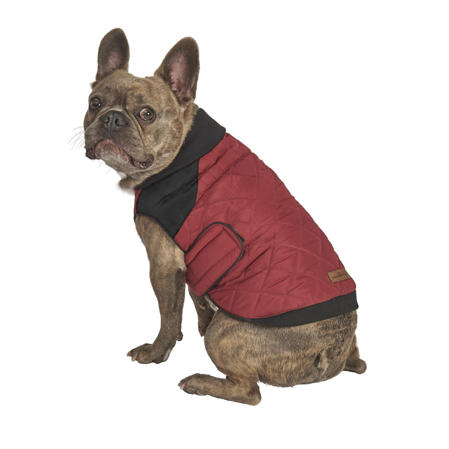 Eddie Bauer Graham Point Hunter's Dog Jacket - Brick