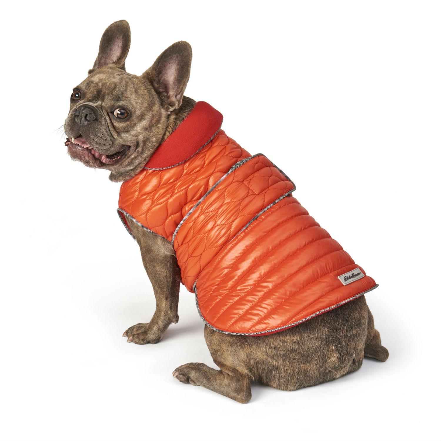 Eddie Bauer Lakedale Reversible Dog Vest - Orange