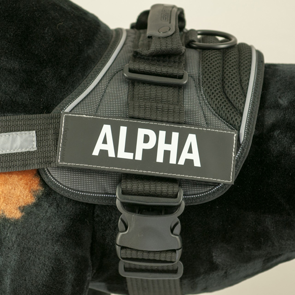 EzyDog Side Patches for Convert Harness - Alpha