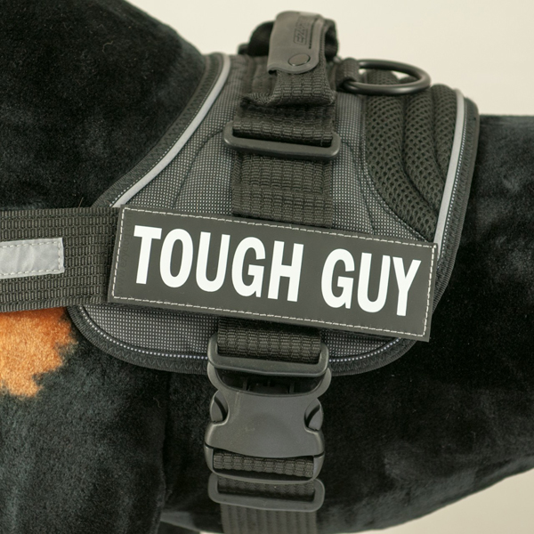EzyDog Side Patches for Convert Harness- Tough Guy