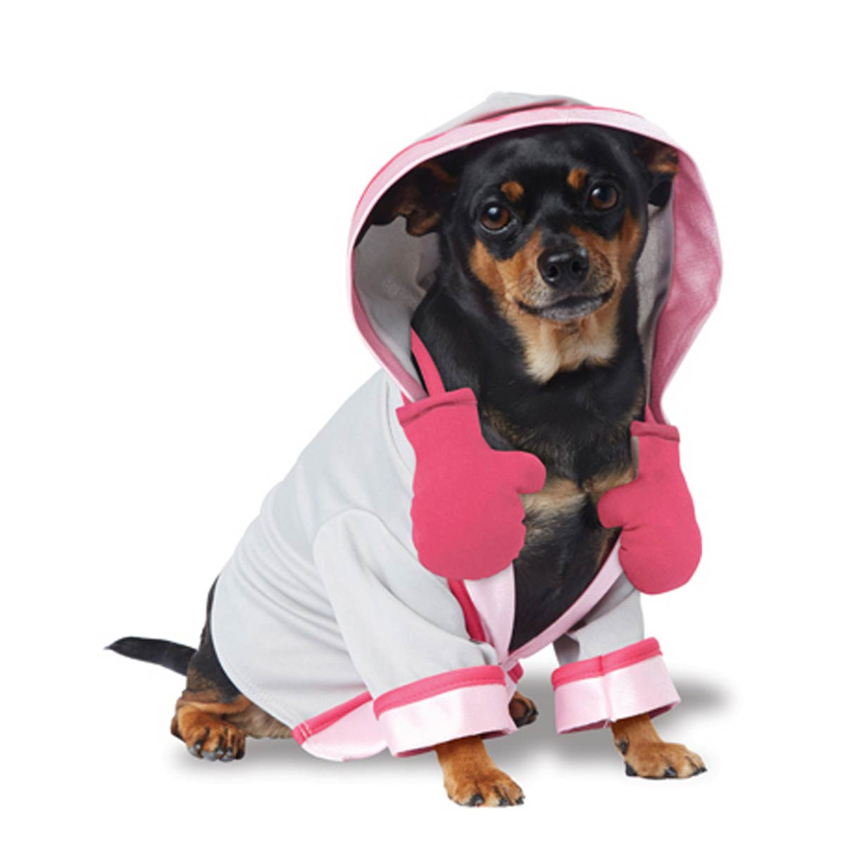 Fighting for a Cure BCRF Dog Costume