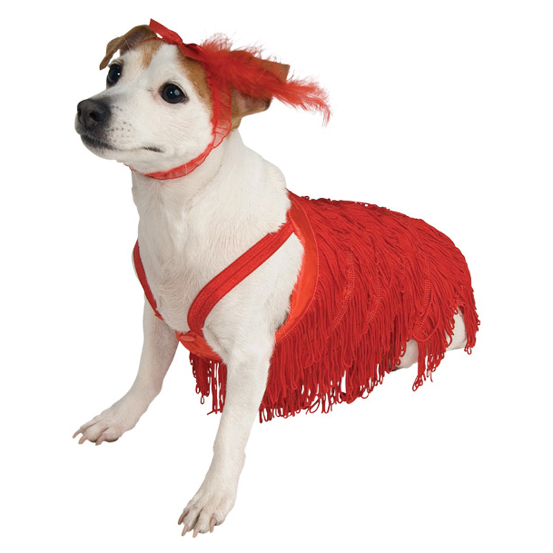 Flapper Dog Dress Costume  sc 1 st  BaxterBoo & Flapper Dog Dress Costume with Same Day Shipping | BaxterBoo