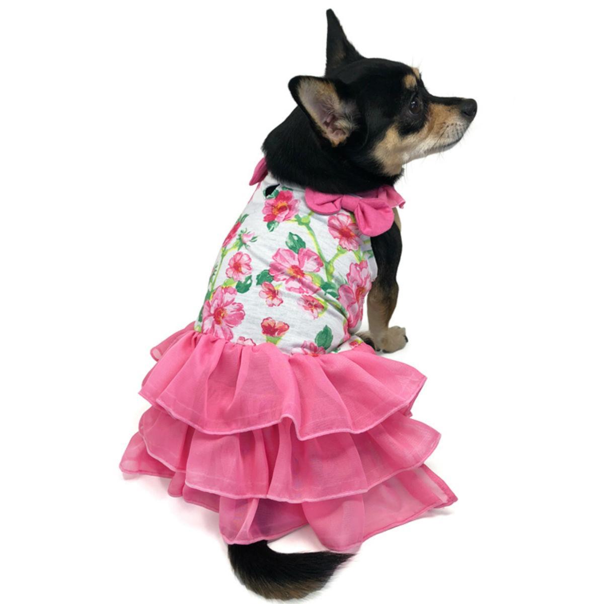 Floral Flounce Dog Dress by Dogo